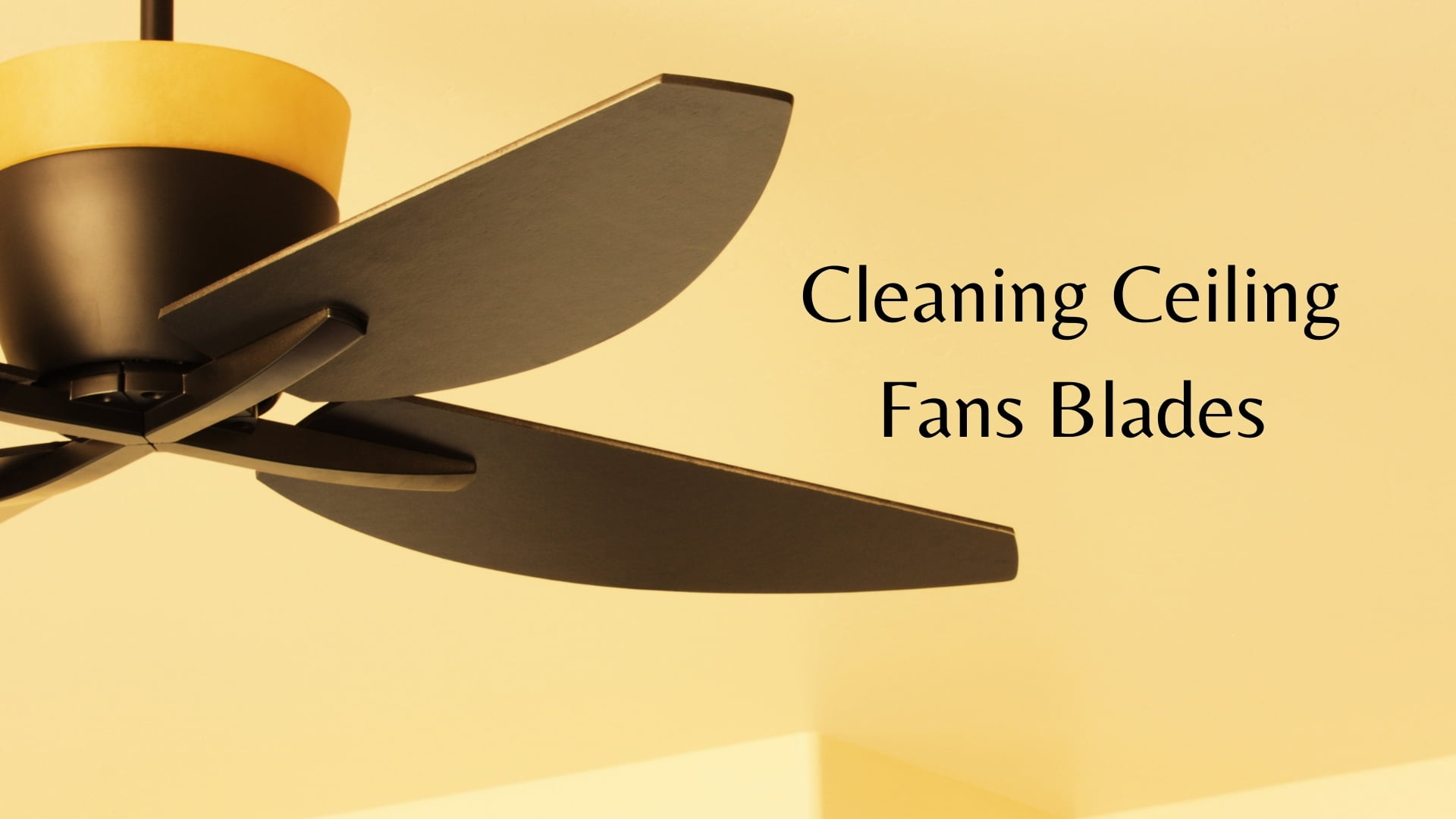how to clean ceiling fans blades