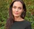 Angelina Jolie's Shocking Health Struggles Over The Years